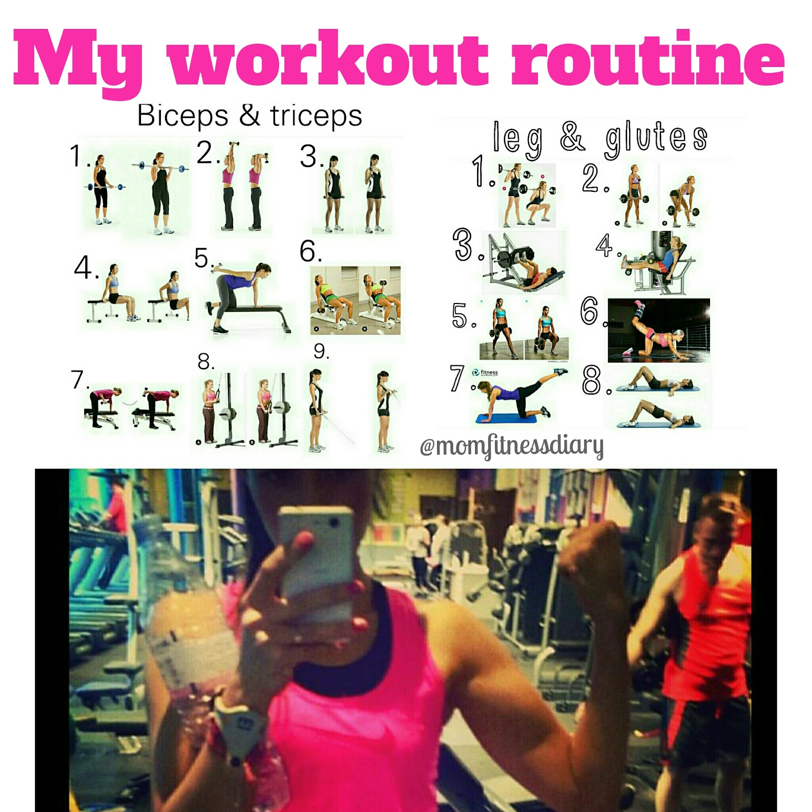My Gym Workout Routine
